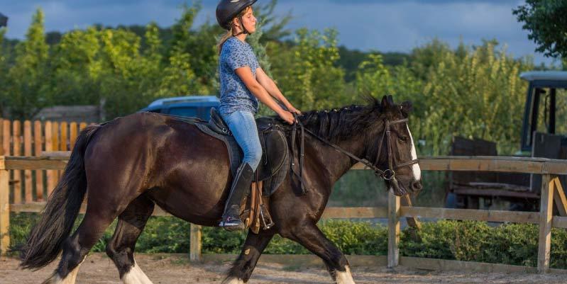 10 consejos para montar a caballo que te ayudarán