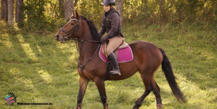 consejos para montar a caballo por primera vez