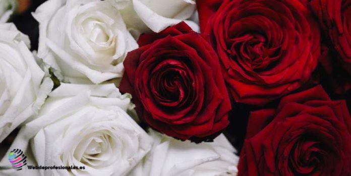 las mejores floristerias de madrid