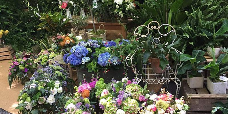 flores a domicilio en madrid baratas